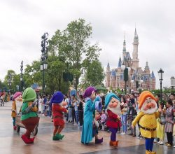 theme parks in shanghai (1)