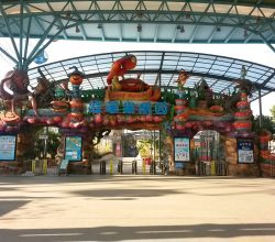 water parks in china (2)